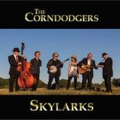 Skylarks by The Corndodgers