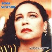 Añorandote by Sonia Silvestre
