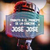 Tributo a El Príncipe de la Canción José José by Various Artists