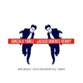 Acaso Quieres Venir: Tributo a Jorge González de Gonzalo Yañez