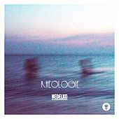 Rhéologie de Nedelko
