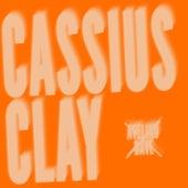 Cassius Clay de Avelino