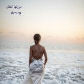 درولها لعقل by Amira