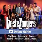 Beste Zangers Online Editie de Various Artists