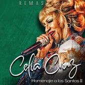 Homenaje a los Santos II de Celia Cruz
