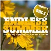 Endless Summer, Vol. 1 von Various