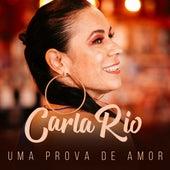 Uma Prova de Amor de Carla Rio