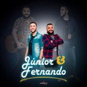 Aí Nega by Júnior e Fernando