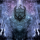 Thin the Veil by Tomb