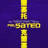Pal Sateo von KRZ