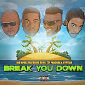 Break You Down by Big Hookz