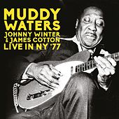 Live In NY '77 by Johnny Winter Muddy Waters