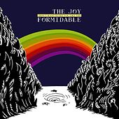 I Don't Want To See You Like This by The Joy Formidable