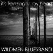 It's Freezing in My Heart by Wildmen Bluesband