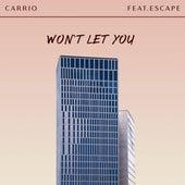 Won't Let You (feat. Escape) by Carrio