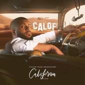 Calofornia by CALO