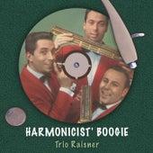 Harmonicist' Boogie von Trio Raisner