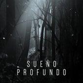 Sueño Profundo by Axel Gillison