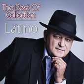 The best of collection de Latino