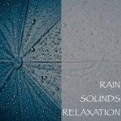 Rain Sounds Relaxation de Various Artists