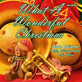 What a Wonderful Christmas de Jouko Harjanne