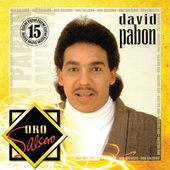 Oro Salsero by David Pabon