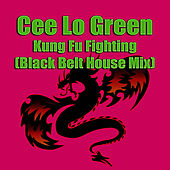 Kung Fu Fighting (Remix) by CeeLo Green