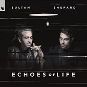 Echoes Of Life: Day de Sultan + Shepard