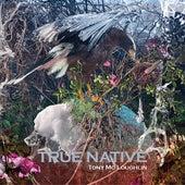True Native de Tony McLoughlin