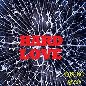 CoverAge: Hard Love by Dying Seed