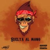 Suelta al Mono by Jimmy B