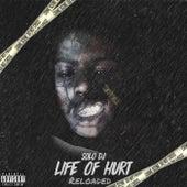Life Of Hurt de Solo DJ