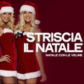 Striscia il natale (Natale Con Le Veline) de Various Artists