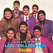Nunca Te Olvidare de Los Vallenatos De La Cumbia