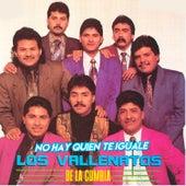 No Hay Quien Te Iguale de Los Vallenatos De La Cumbia