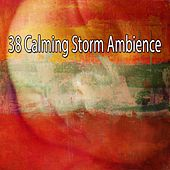 38 Calming Storm Ambience by Rain Sounds Nature Collection