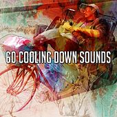 60 Cooling Down Sounds de Best Relaxing SPA Music