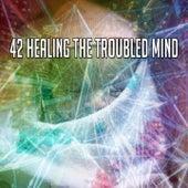 42 Healing the Troubled Mind von Baby Sleep Sleep
