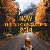 Now The Hits of Autumn 2019 de Junta, Lilian, Stefy K, Ester, Beat B, Josué, Alex J, Davies, Sephora, Nadine, Alberto Gonzalez, Alegrìa Amaya, Bamby Josh