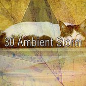 30 Ambient Storm by Rain Sounds and White Noise