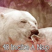 48 Incite a Nap by Deep Sleep Relaxation