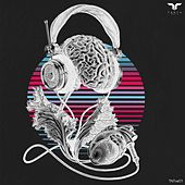 Tanta Music Various Artists 001 by Various Artists