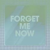 Forget Me Now by Poliça