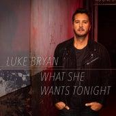 What She Wants Tonight by Luke Bryan