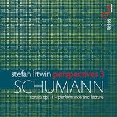 Stefan Litwik Perspectives 3 von Various Artists
