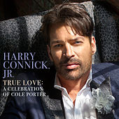 True Love: A Celebration Of Cole Porter by Harry Connick, Jr.