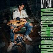 Não Importa by Micael