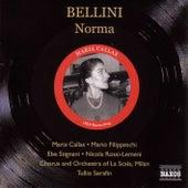 Bellini: Norma (Callas, Filippeschi) (1953) de Various Artists