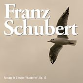 Fantasy in C major 'wanderer', op. 15 de Franz Schubert