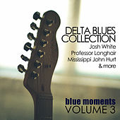 Delta Blues Collection: Blue Moments, Volume 3 by Various Artists
